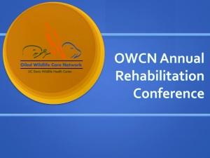 Annual Rehabilitation Conference