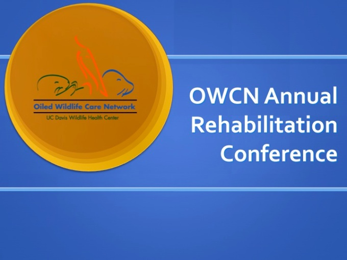 Annual Rehabilitation Conference