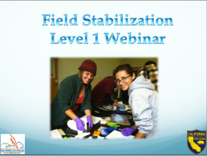 FS Level 1 webinar title photo