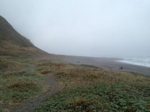 Start of the Lost Coast Trail