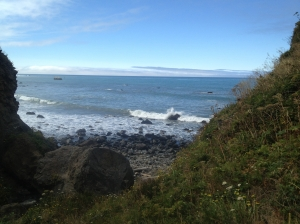 View of Lost Coast