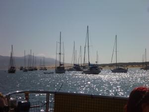 Morro Bay sailboats
