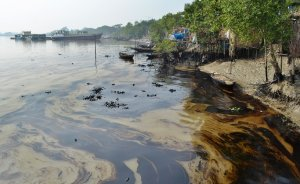 Oil slick line the banks of the Shela River (AP Photo/ Khairul Alam)