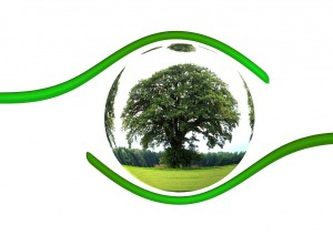 ecology_protection_protect_tree_responsibility_globe_earth_world-1334149.jpg!d